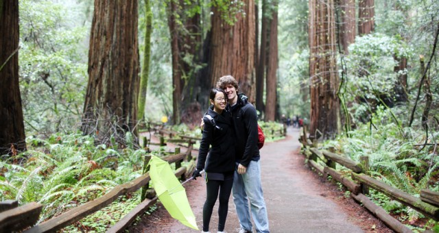 Theresa & Rob | Muir Woods Lifestyle Photography