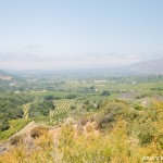 Prior to my visit, the best I could gather about Ojai was that it was a small town with a lot of farm land, and...