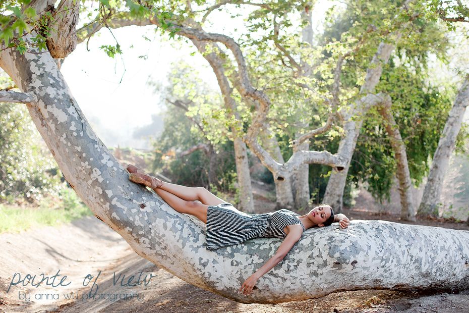 ballerina in a tree, los angeles, california | Pointe of View ballerina series by Anna Wu Photography