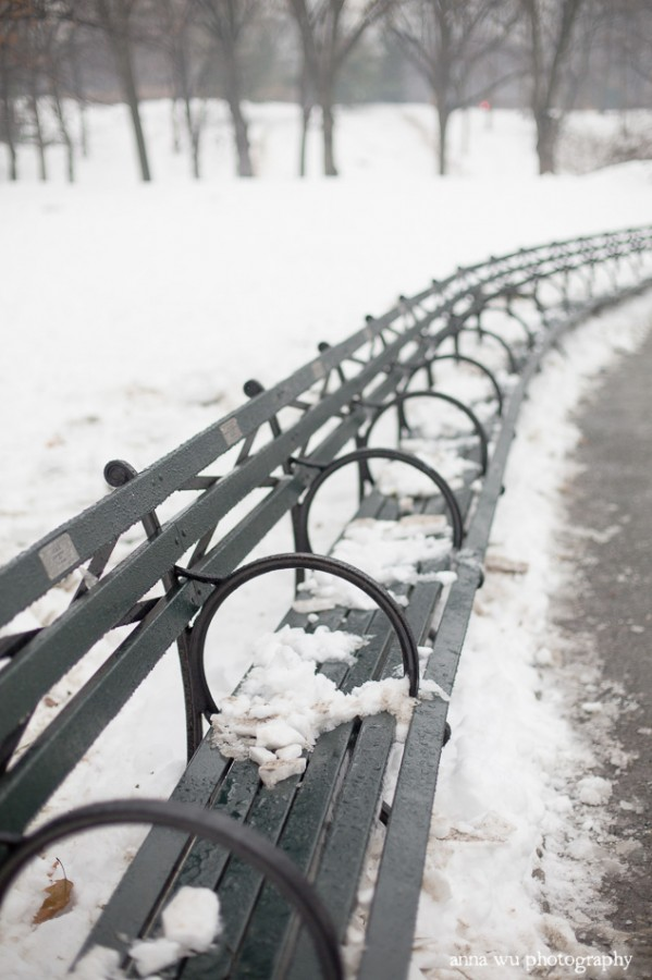 snowy benches | Snowy Central Park by Anna Wu Photography