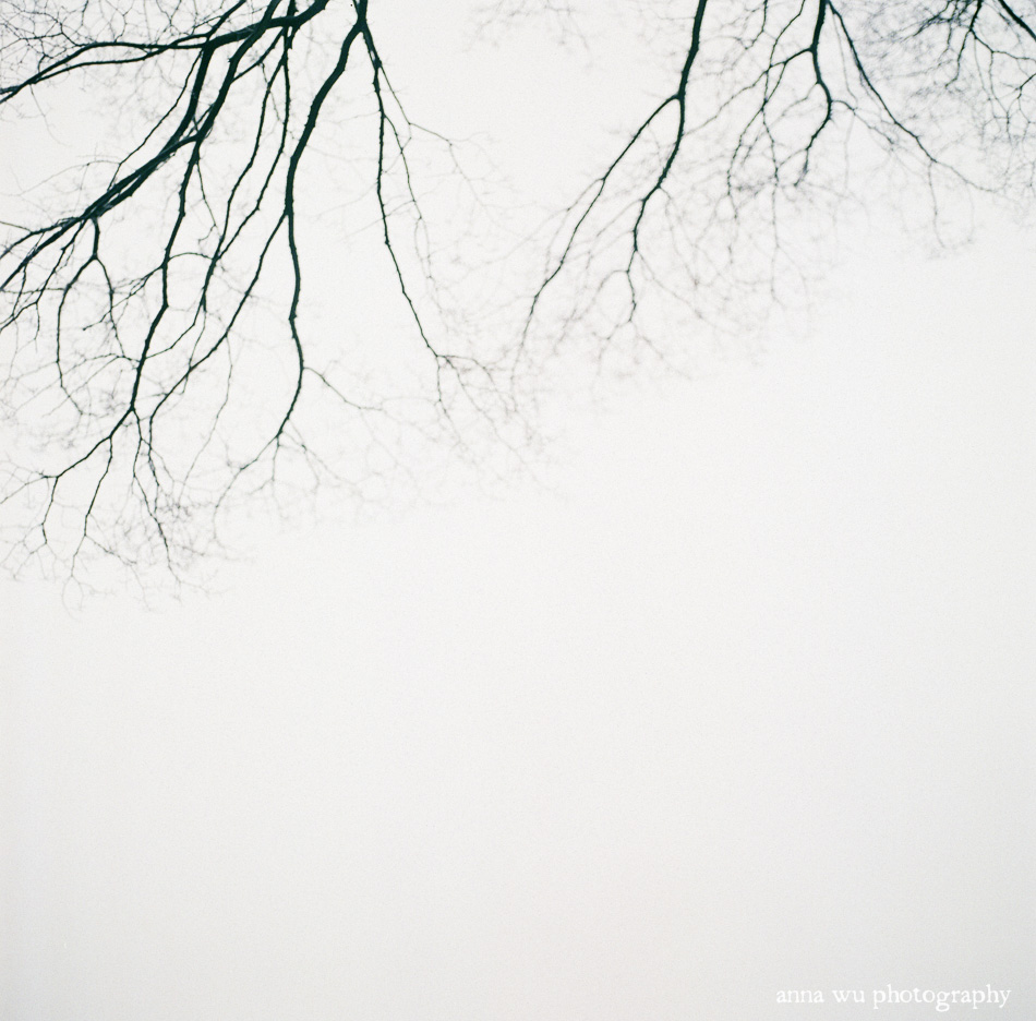 Snowy Central Park | Film Photography by Anna Wu