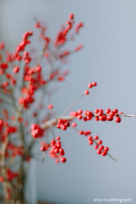 Red Winter Berries | New York City Winter Holidays | Anna Wu Travel Photography