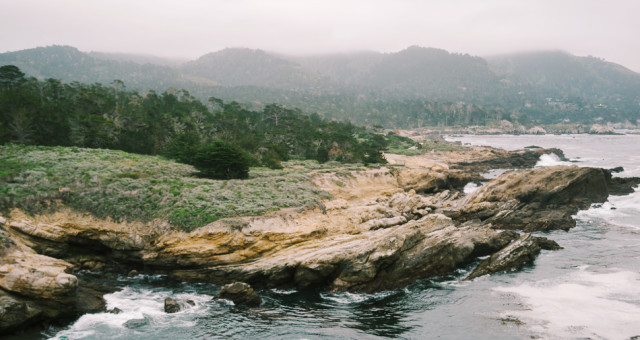Hiking the Bay | Bothe-Napa, Redwood Regional, Cataract Falls, & Point Lobos