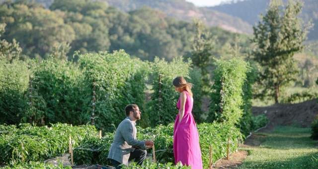 Lindsay & Eric | The French Laundry | Surprise Proposal Photography