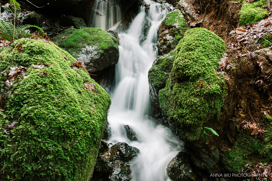 Cataract Falls Hike, Marin County, California