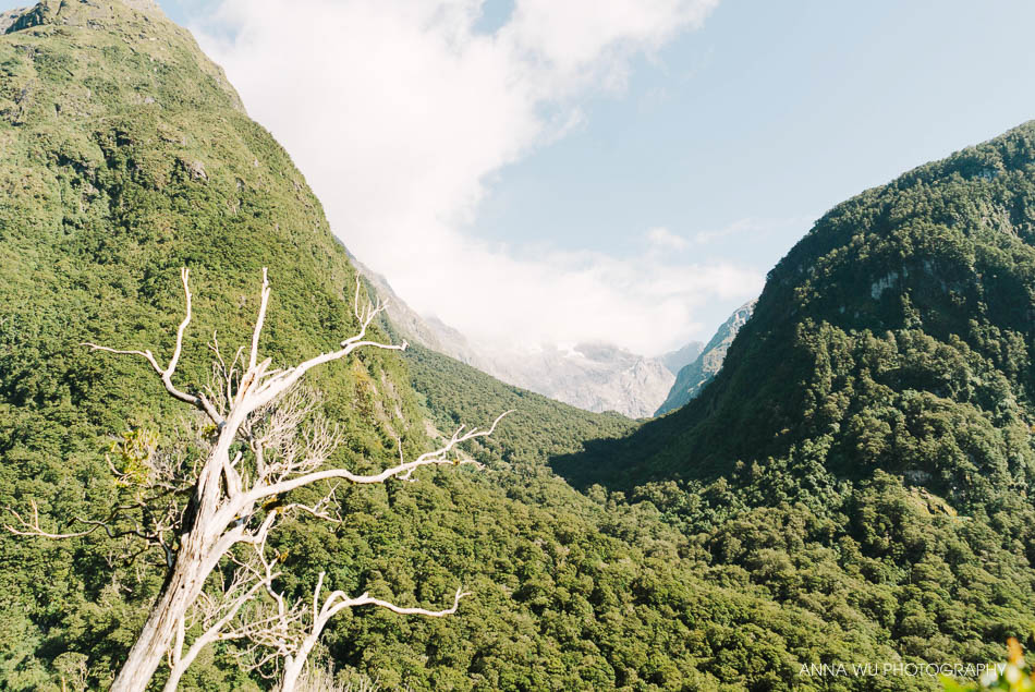 Milford Sound | South Island, New Zealand | Anna Wu Travelogues