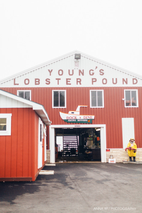 Young's Lobster Pound, Maine Road Trip