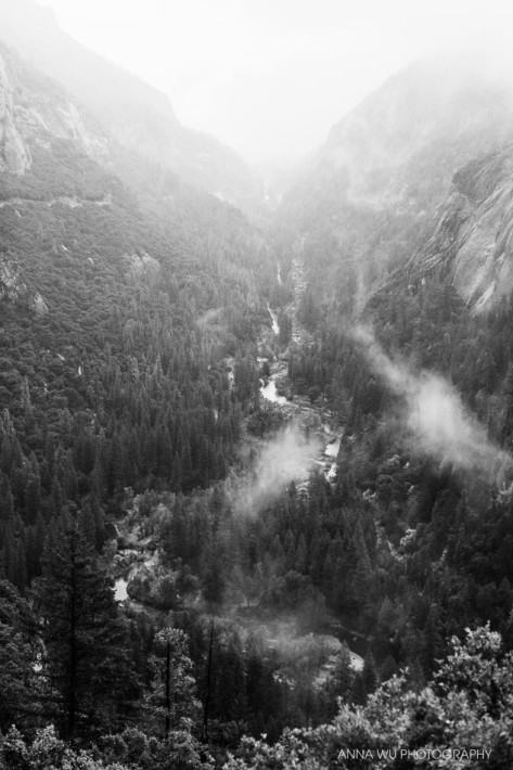 Rainy Day in Yosemite National Park | Anna Wu Travelogues