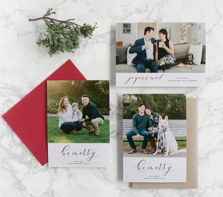 San Francisco Holiday Card Sessions, 2016