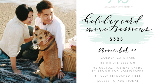 San Francisco Holiday Card Mini Sessions, 2017